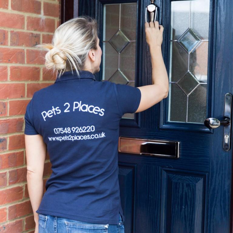 Pet taxi to your door